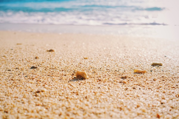 キレイな海岸