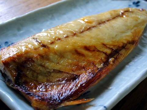 美味しそうな秋の焼き魚