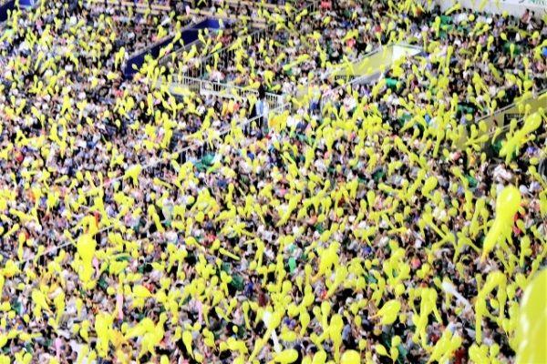 阪神甲子園球場のタイガースファンの観客席